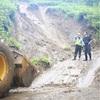 秋田で記録的大雨、雄物川が氾濫し浸水も