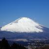 富士山を見るために金時山に登った