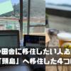 【岡山】僕が「頭島」という離島に移住することに決めた4つの理由