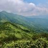 白砂山 花の登山道を歩く