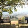 日本の高齢化社会、増加する熟年離婚