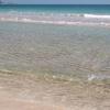 伊豆の海 水質調査とか基本的な事とか