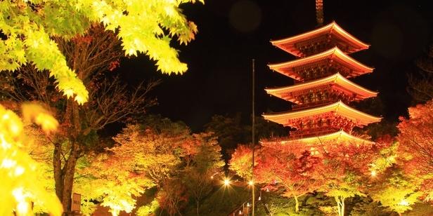 夜に煌めく極上もみじ!京都府 紅葉ライトアップ9選