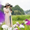 【青山花しょうぶ園】森に囲まれたしょうぶ園・穴場スポット紹介!