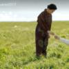 【映画 いつまた、君と〜何日君再来(ホーリージュンザイライ)〜】ネタバレ。野際陽子さんに涙が止まらない。