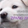 ZIPZNG 2019 出展のお知らせ