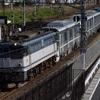 通達177 「 甲51 東京メトロ13000系(13107f)の甲種輸送を狙う 」