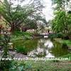 <香港:青衣>青衣公園 ~緑がいっぱいで人工湖もある大きな公園~