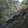穀雨の加持の山遊山 祈る道