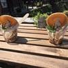 【銀山温泉】夏の思い出 日本酒を求めて