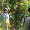 里山林整備