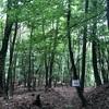 【登山No.60②】奈良倉山、鶴寝山/山梨県大月市、小菅村