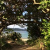 加計呂麻島のシュノーケルスポット