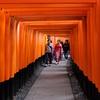 京都観光人気第一位