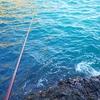 串本大島湾内磯で冬のグレ釣り・・・撃沈ww
