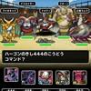 level.712【ドラゴン系15%UP】第126回闘技場ランキングバトル2日目