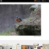 2017年最新版!はてなブログの画像を削除する方法~画像フォルダの整理