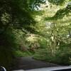 処暑の皿ヶ峰遊山 風の森