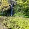 あまだトンボ池(静岡県裾野)