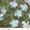 【翻訳してみた】スメラルド第3話【BTS新シリーズ LOVE YOURSELF】
