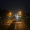 濃霧の中を朝散歩
