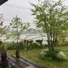 雨の日はステイホーム