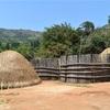 【エスワティニ】スワジ文化村で大迫力のリードダンス