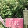 竹島・韓国一人旅五日目 独島博物館とムクホ港への生還