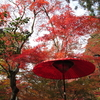 有馬温泉 瑞宝寺公園の紅葉