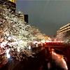 駒沢通りを