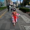 日本旅行2017年4月京都旅行⑧🚌 京都の楽しみ方もいろいろ、人生もいろいろ👘