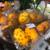 意外にもフルーツ大国な中国 スーパー並ぶ見たこともない果物たち