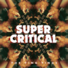 The Ting Tings『Super Critical』