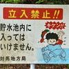 小浦ダム(長崎県対馬)