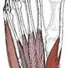 足の指先がチクチクする症状【5】