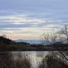 平城宮跡のすぐ北に水上池。四季を通じて楽しめるとはいえ、冬の風景は詩情ゆたかで凍てつきさえ気分が良い。
