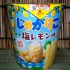 【新商品】最も食べたい味 じゃがりこ塩レモン味【期間限定】