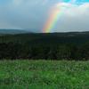 あの虹の袂に