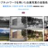 授業で使えるかも?:白黒画像をカラー画像に自動変換できる研究
