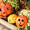 ハロウィン装飾が綺麗なローズガーデンを散策