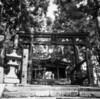 第1067回 日本の古層(14)古代ヤマトの東西につらなる金属の神の足跡