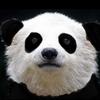 シャンシャン公開!パンダがかわいい理由を画像で検証してみた