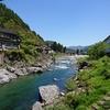 旅行記 岐阜県の郡上市に芝桜を見に行った話