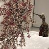福岡市美術館リニューアルオープン記念展