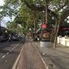 インドネシア サヌール  デンパサール、クレネンナイトマーケット 観光 ローカルフード  おすすめ 画像あり