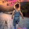 【夏休み】クーラーの下でOK!親子で楽しむ室内遊び【料理編】