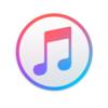 iTunes 12.9.4 iOSの復元をIPSWから行えないように ダウングレードが出来ないように