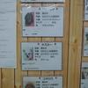 保護犬パーク長居店 2021.3.6