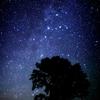 宮沢賢治作詞作曲『星めぐりのうた』を知っていますか?