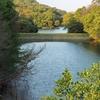 一尺谷中池(岡山県倉敷)